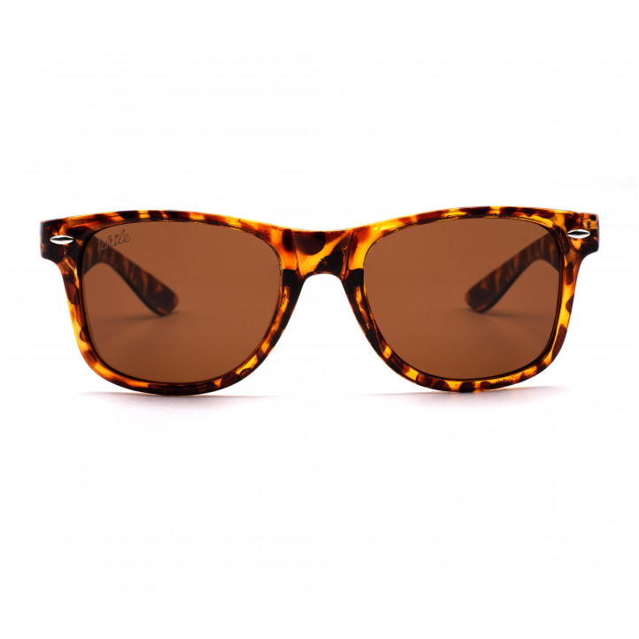Gafas de sol Wild Turtle tortoise - Querol online