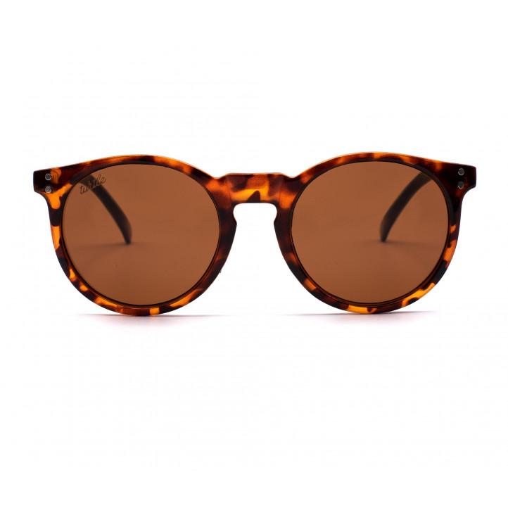 Gafas de sol Wild Turtle turtle - Querol online